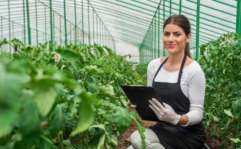 Млади земеделски стопани: един милиард евро за по-лесен достъп до финансиране