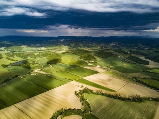 Министрите на земеделието на Германия, Франция и Испания призовават за по-опростена и зелена ОСП, която запазва общностния си характер в ЕС