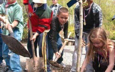 """ЕК предвижда създаването на нова схема """"Дървета за деца"""""""