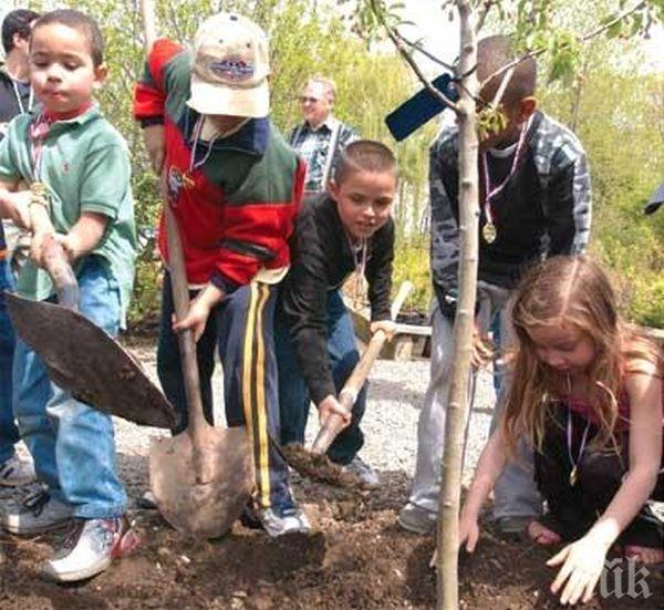 ОСП след 2020 г. може да финансира засаждането на дръвчета от деца