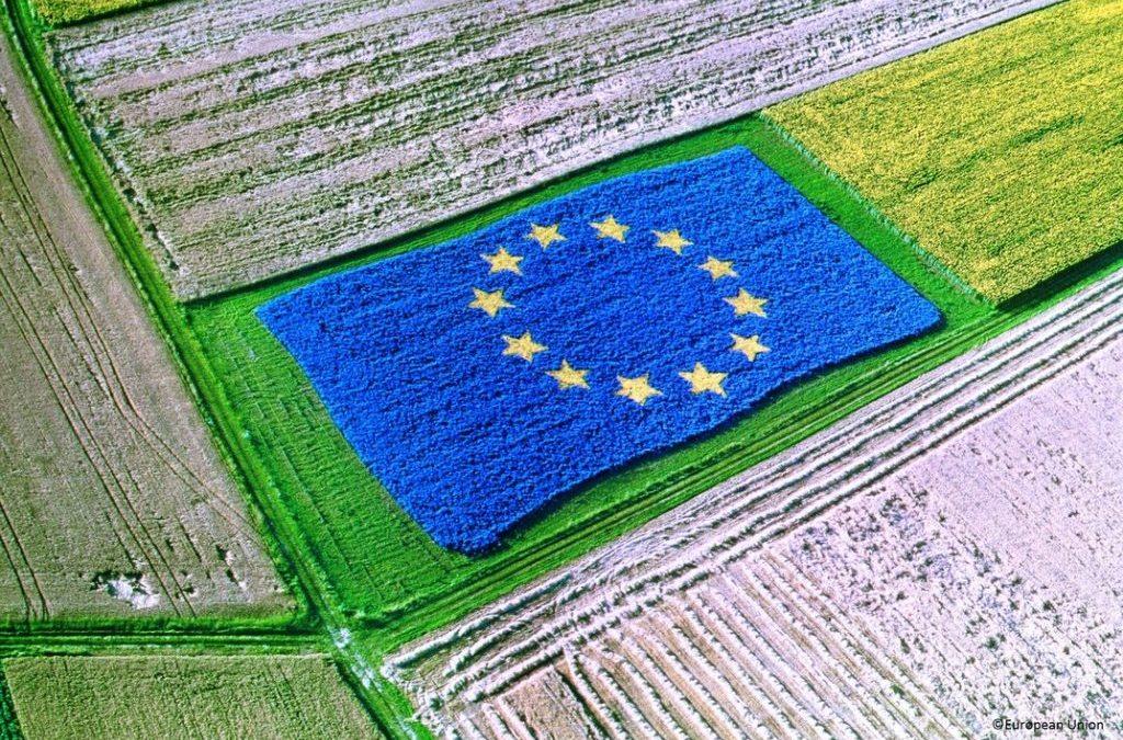 Председателят на Комисията по околна среда Паскал Канфен в обръщение до  Председателя на Комисията по земеделие на Европейския парламент (ЕП) Норберт Линс, пледира за  продължаване на сътрудничеството между двете комисии по реформата на ОСП