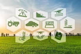 """Кои бяха основните въпроси на заседанието на РГ """"Хоризонтални земеделски въпроси- Реформа на ОСП"""" към Съвета на ЕС"""