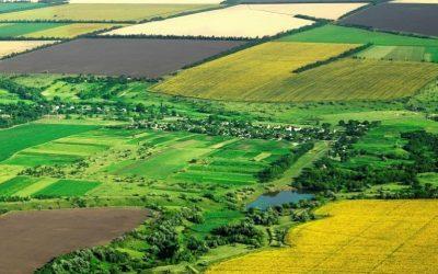 DG AGRI предлага техническа помощ за използване на финансови инструменти в земеделието