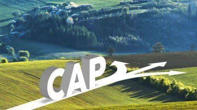 12 точки от новата селскостопанска политика на ЕС, свързани с околната среда