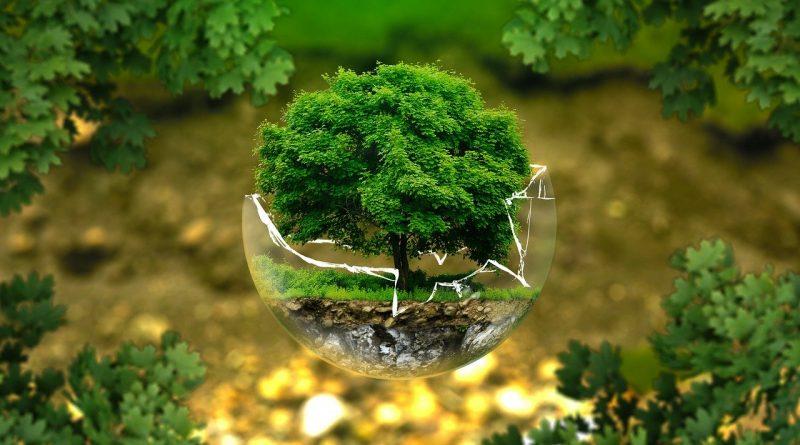 """ЕСП: """"Биоразнообразието в земеделските земи продължава да намалява въпреки приноса на ОСП"""""""