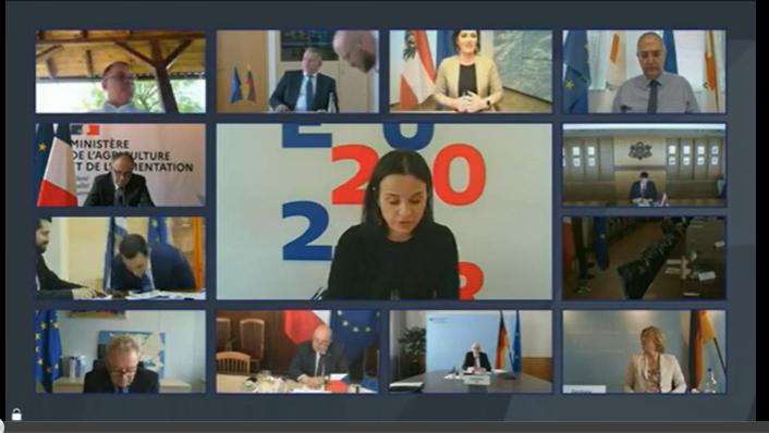 Коментари от видеоконференцията на министрите на земеделието, 8 юни 2020 г.