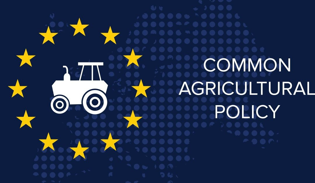 На 10 ноември 2020 г. се проведе първата тристранна среща по пакета за реформа на ОСП, с което започнаха преговорите на Съвета с Европейския парламент (ЕП) и Комисията по трите предложения: Регламент за стратегическите планове по ОСП (РСП), Хоризонтален регламент (ХР) и Регламент за изменение на Общата организация на пазара (ООП).