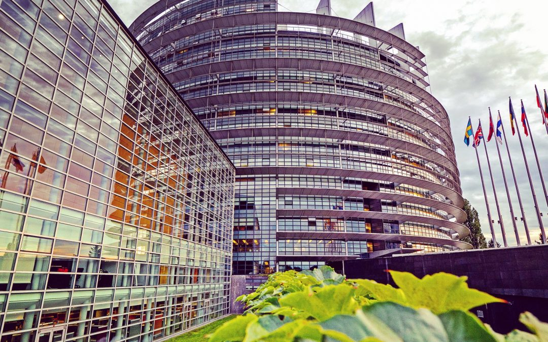 Съвет на ЕС: Преговорите за новата ОСП може да завършат през пролетта